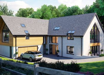 Thumbnail 5 bed detached house for sale in Park Lane, Exeter, Devon