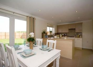 """Thumbnail 3 bed terraced house for sale in """"The Souter"""" at Admiral Way, Carlisle"""
