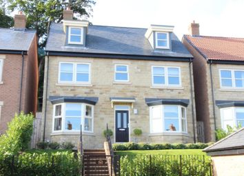 Thumbnail 5 bed detached house for sale in Willoughby Park, Alnwick