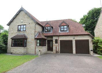 Thumbnail 4 bed detached house for sale in Abbey Lane Dell, Sheffield, South Yorkshire