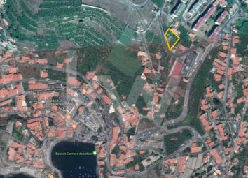 Thumbnail Land for sale in Rua Padre António Sousa Da Costa, 9300 Câmara De Lobos, Portugal