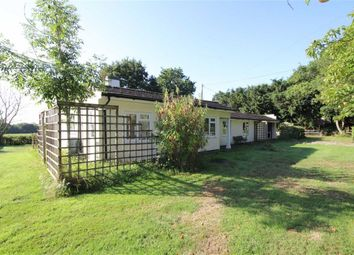 Thumbnail 4 bed detached bungalow for sale in Braydon, Braydon Swindon, Swindon