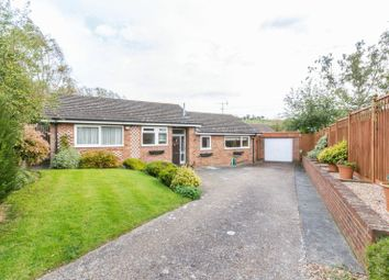 Thumbnail 2 bed detached bungalow for sale in Cock Lane, Elham, Canterbury