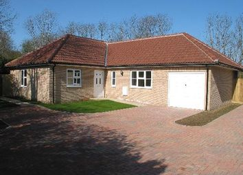 Thumbnail 3 bed bungalow to rent in Withindale Lane, Long Melford, Suffolk