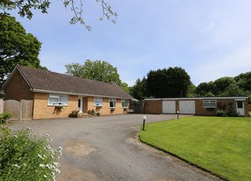 Thumbnail Detached bungalow for sale in Harrowsley Green Lane, Horley