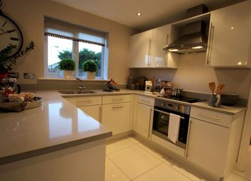 "Thumbnail 4 bedroom detached house for sale in ""The Roseberry"" at Hartburn, Morpeth"
