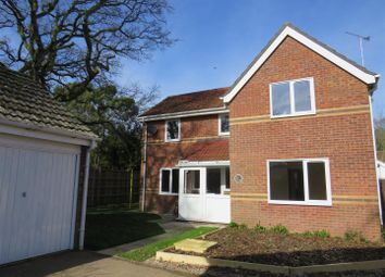 Thumbnail 4 bed property to rent in John Drewry Close, Framingham Earl, Norwich