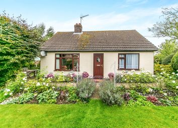 Thumbnail 2 bedroom detached bungalow for sale in Waldingfield Road, Sudbury