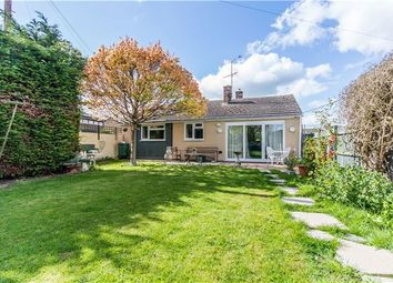 Thumbnail 2 bedroom bungalow for sale in Arcadia Gardens, Oakington, Cambridge