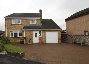 Thumbnail 3 bed detached house for sale in Willow Park, Langley Park, Durham