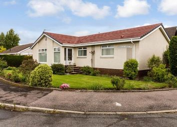 Thumbnail 4 bedroom bungalow for sale in Douglas Street, Overtown, Wishaw