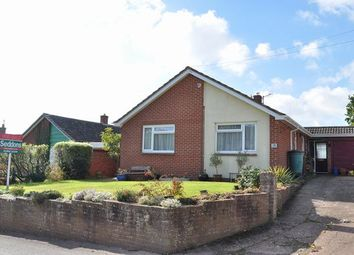 Thumbnail 3 bed detached bungalow for sale in Coach Road, Silverton, Exeter