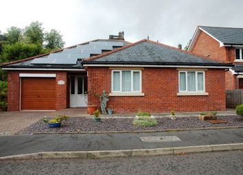 Thumbnail 2 bed detached bungalow for sale in 16 Marchfield Mount, Dumfries