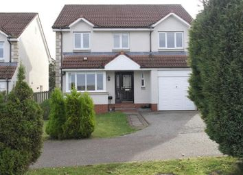 Thumbnail 4 bed detached house to rent in Hamilton Avenue, Tayport