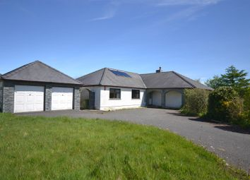 Thumbnail 3 bedroom detached bungalow for sale in Tanygroes, Cardigan