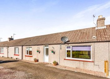 Thumbnail 2 bed bungalow for sale in Craigo, Montrose