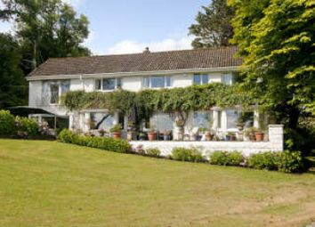 Thumbnail 5 bed detached house for sale in Oxwich, Gower, Swansea