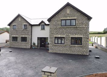 Thumbnail 4 bedroom detached house for sale in Pentrepoeth, Idole, Nr. Carmarthen