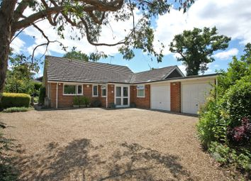 Thumbnail 3 bed detached bungalow for sale in The Meadows, Churt, Farnham, Surrey