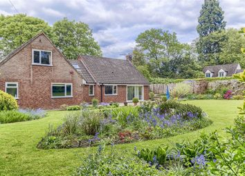 Thumbnail 5 bed detached bungalow for sale in Churchfields, Hertford