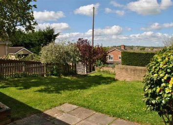 Thumbnail 4 bed bungalow to rent in Galmington Road, Taunton