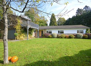 Thumbnail 5 bed detached bungalow for sale in Pine Bank, Hindhead