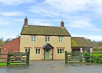Thumbnail 3 bed detached house to rent in Sandhills, Cattistock, Dorchester
