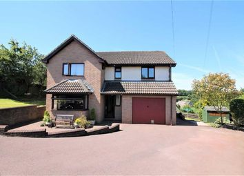 Thumbnail 4 bed detached house for sale in Nine Wells Road, Coleford