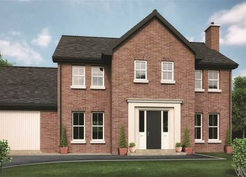 Thumbnail 4 bed detached house for sale in 19, Drumlin View, Dromore
