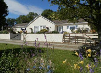 Thumbnail 4 bed detached bungalow for sale in Llwyndafydd, Llandysul