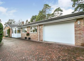 Thumbnail 3 bed bungalow for sale in St Ives, Ringwood, Dorset