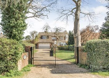 Thumbnail 4 bedroom detached house to rent in Milestone Avenue, Charvil, Reading