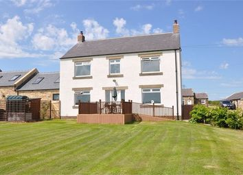 Thumbnail 3 bed detached house to rent in Orchard House, Laker Hall, Newton, Northumberland.