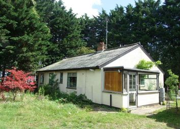 Thumbnail 3 bedroom bungalow for sale in Mildenhall, Bury St. Edmunds, Suffolk