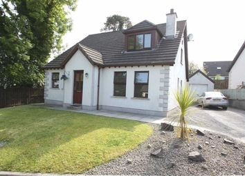 Thumbnail 4 bed detached house for sale in Hawthorn Hill, Dromara, Down