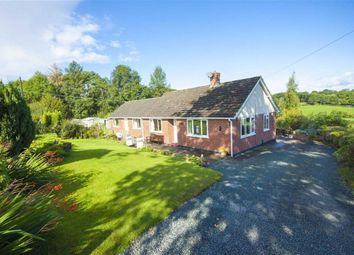 Thumbnail 3 bed detached bungalow for sale in Llangyniew, Welshpool