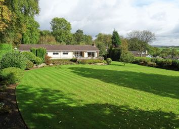 Thumbnail 2 bed detached bungalow for sale in Greyswood, Clay Lake, Endon