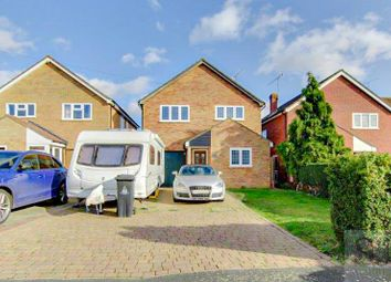 Thumbnail 4 bed detached house to rent in Bramley Way, Mayland, Chelmsford