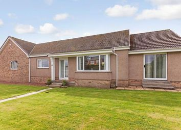 Thumbnail 4 bed bungalow for sale in Donaldfield Road, Bridge Of Weir