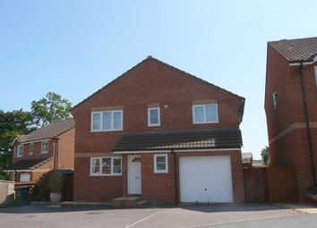 Thumbnail 4 bed property to rent in Whitman Close, Exmouth