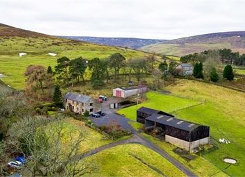 Thumbnail 5 bed farmhouse for sale in Bertram Hill Farm, Slaggyford, Cumbria.