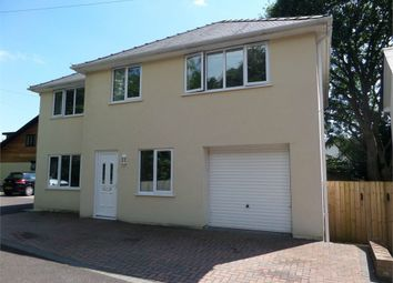 Thumbnail 4 bed detached house for sale in Welsh Street, Chepstow, Monmouthshire