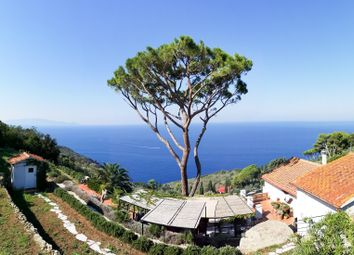 Thumbnail 3 bed villa for sale in Sea, Monte Argentario, Grosseto, Tuscany, Italy