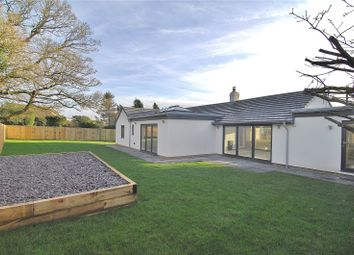 Thumbnail 4 bed bungalow for sale in Tobacconist Road, Minchinhampton, Stroud, Gloucestershire