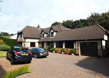 Thumbnail 5 bed detached house to rent in Farmhill Park, Douglas, Isle Of Man