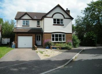 Thumbnail 4 bed property to rent in The Burlands, Feniton, Honiton