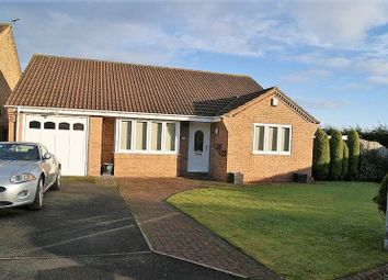 Thumbnail 3 bed detached bungalow to rent in Twickenham Court, Seghill, Cramlington