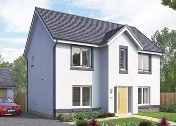"Thumbnail 4 bedroom detached house for sale in ""The Danbury"" at Brora Crescent, Hamilton"