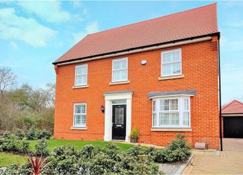 Thumbnail 4 bed detached house for sale in Willow Walk, Southminster