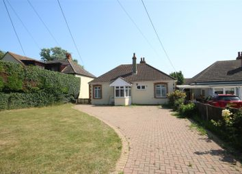Thumbnail 3 bed detached bungalow to rent in Naze Park Road, Walton On The Naze